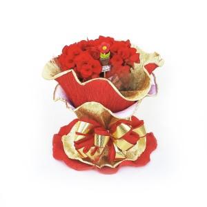 Begônia-Vermelha-com-Embalagem-Italiana-1